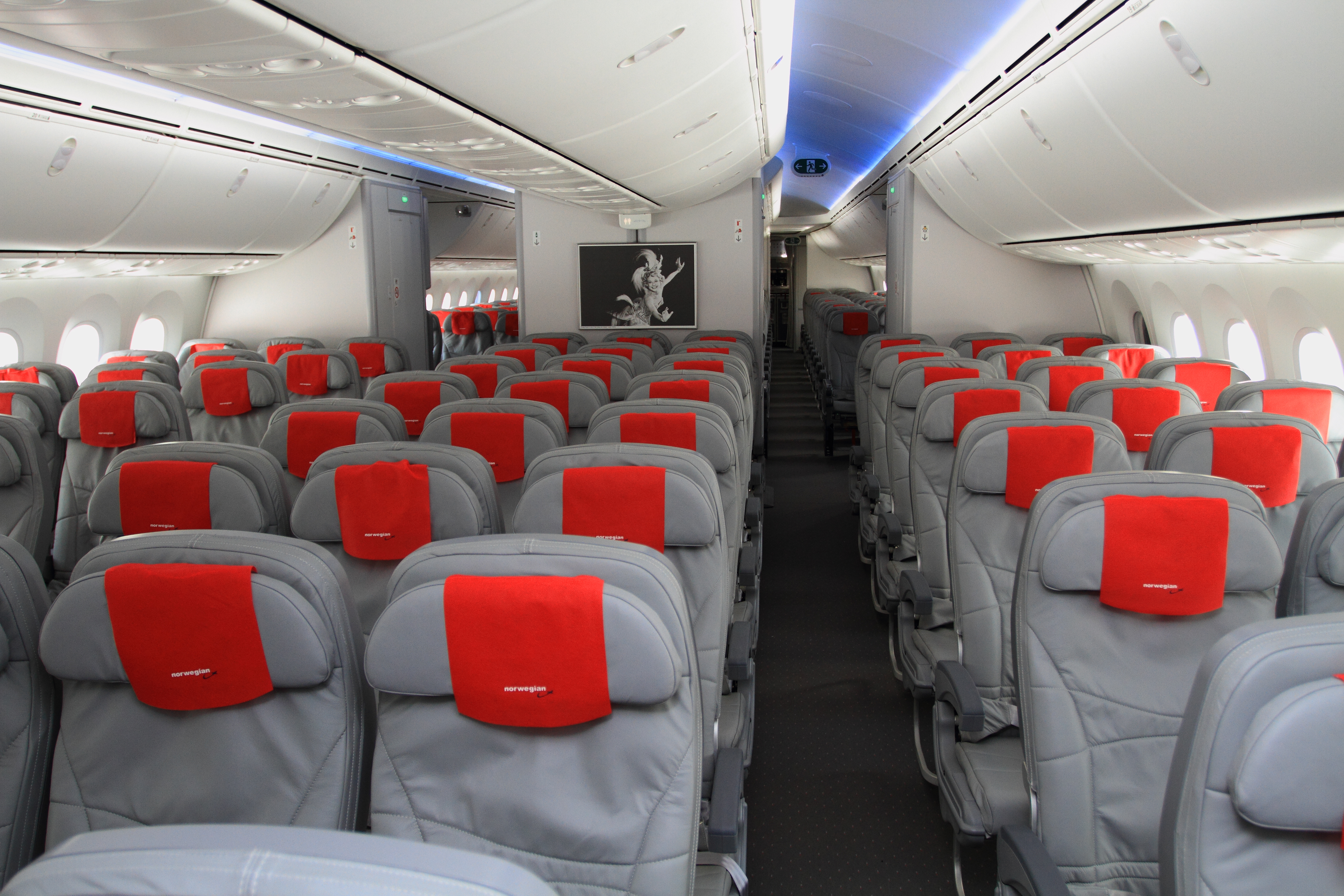 interior-dreamliner1